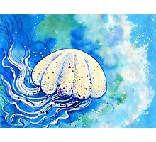Jellyfish flowing in the sea Photographic Print