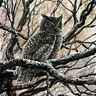 Winter Owl by katemccredie