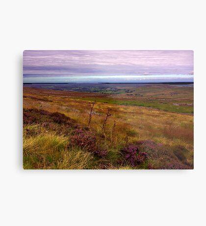 North Yorks Moors National Park Metal Print