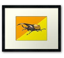 Hercules Beetle  Framed Print