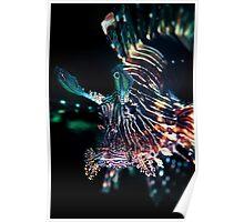 Black lion fish - Lembeh Straits Poster