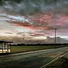 Blackheath Bus Stops by Karen Martin