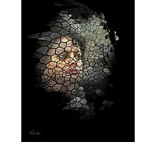 Caught in the webs of... Photographic Print