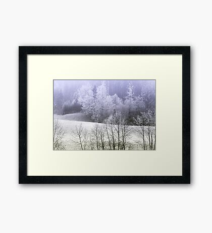 Silver trees Framed Print