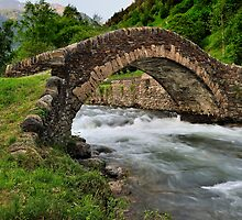 romanesque bridge by Josep M Penalver