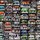 ALL 62 Rhino's by AnnDixon