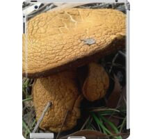 Giants among the Gum Trees iPad Case/Skin