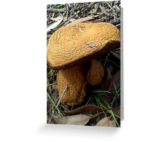 Giants among the Gum Trees Greeting Card