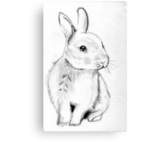 Bluebell the Fluffy White Bunny Canvas Print