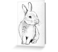 Bluebell the Fluffy White Bunny Greeting Card