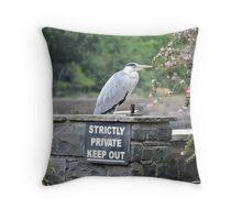 Herons Don't Read Throw Pillow