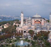 Mosque in Istanbul by Patrick  Ellis