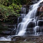Somersby Falls by DaveBassett