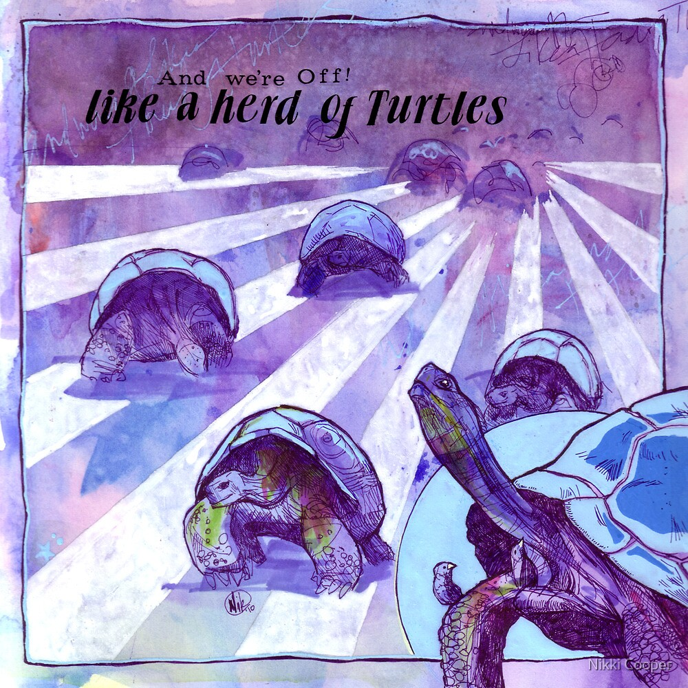 And We're Off Like a Herd of Turtles by Nikki Cooper