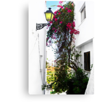 Frigiliana Wallflower Canvas Print