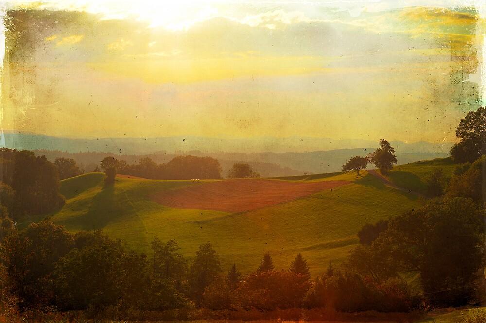 Swiss Tuscany by Dominic Kamp