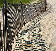 Beach Fence Shadows, Lake Michigan by John Carpenter