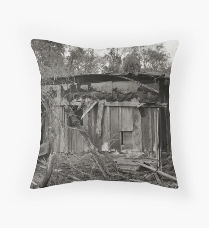 Rural Remnant Throw Pillow