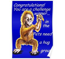 Banner for Pets need a hug challenge entry Poster
