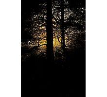 7 star ******* Lappland sunset - Sweden. Brown Sugar Story. Photographic Print