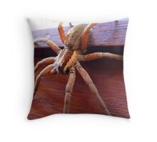 Come in to my Lair! - Spider - NZ - Southland Throw Pillow