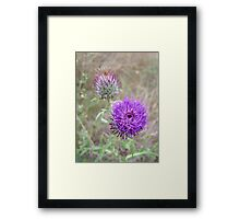 Purple Wild Flower Framed Print