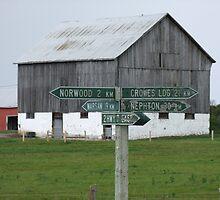 Which Way Do Ya Wanna Go? by Tracy Wazny