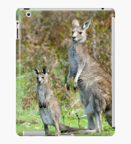 Stand Together iPad Case/Skin