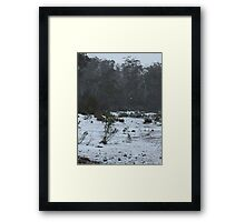 Winter wonderland 4 Framed Print