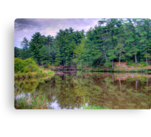 Solitude & Reflection Canvas Print