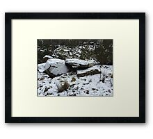 winter wonderland 6 Framed Print