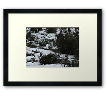winter wonderland 7 Framed Print