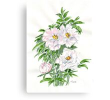 Ice-pink Peonies Canvas Print