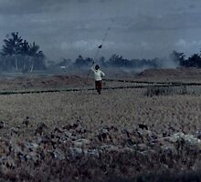 She grazed her ducks in a smoke filled paddock on a blue bali day 1987 by madworld