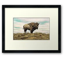 Buffalo Hill Framed Print