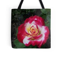 A Rose is a Rose 8 Tote Bag