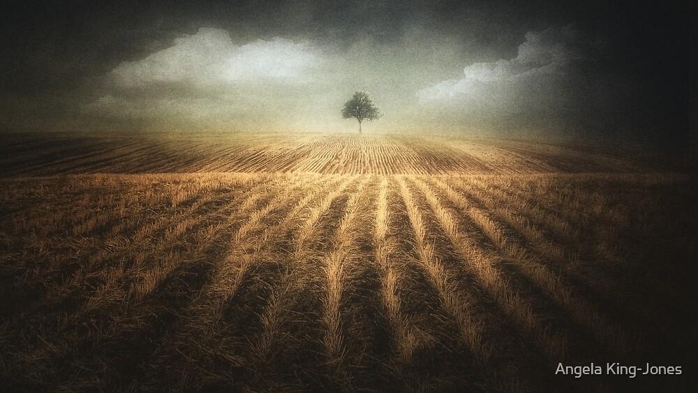 Where the sky meets the Earth by Angela King-Jones
