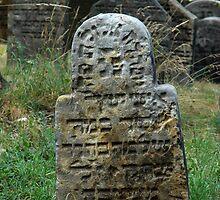 Jewish cemetery - Libochovice XIV. by Natas