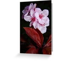 Even at Night Greeting Card