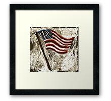 the American Flag Framed Print