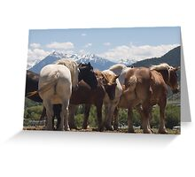 Manes & Tails Greeting Card