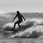 Silver Surf by Mark Bolton