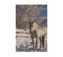 Where is the horse? Art Print