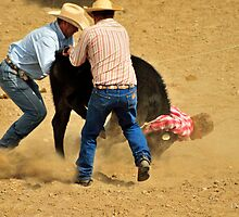 Lookin' at the Dirt, Montana Rodeo photo. by Donna Ridgway