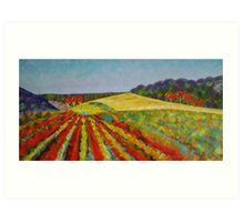 Peninsula Vineyard - Sold Art Print