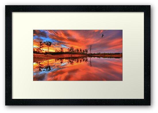 Yellow Sapphire Sunset by Adam Gormley