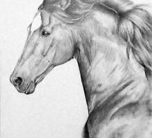 Portrait of a Horse by Felicity Deverell