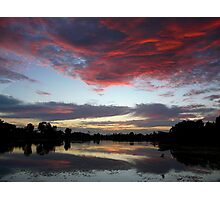 Nature's Paint Brush At Work Photographic Print