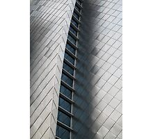 Silver Fish Scale Wall Photographic Print