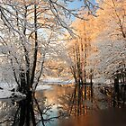 River landscape with hoarfrost trees by Romeo Koitme
